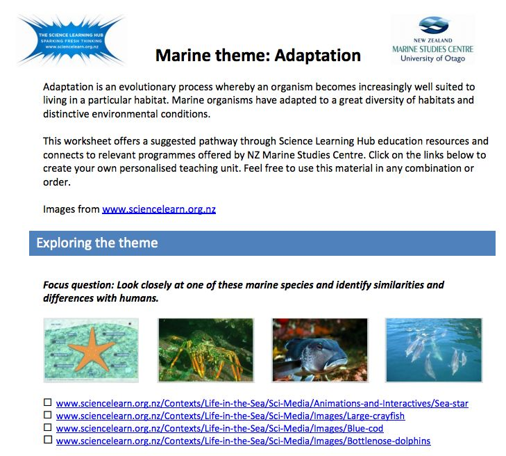 Some suggestions for teaching a lesson or unit on adaptation in marine environments. (PDF download)