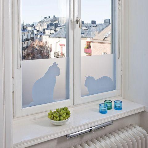 Für die Privatsphäre: Fensterfolie mit Kätzchen.