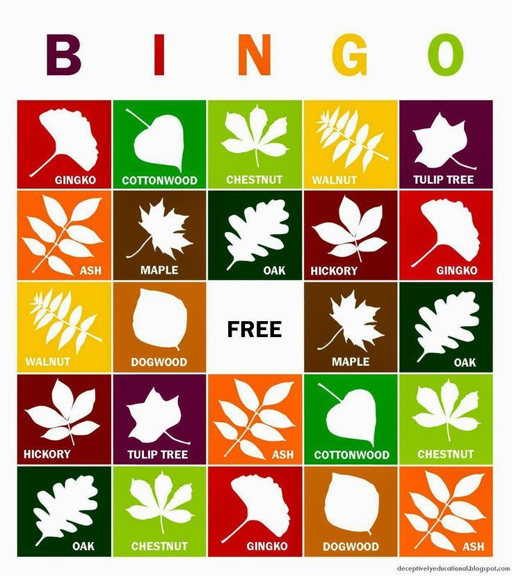 We're up for a game of leaf bingo this fall!