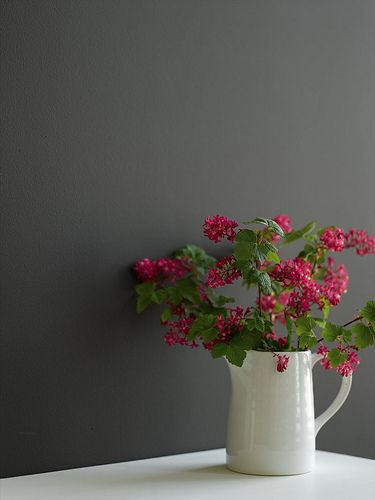 Vase against deep grey painted wall by The Little Greene Paint Company, via Flickr