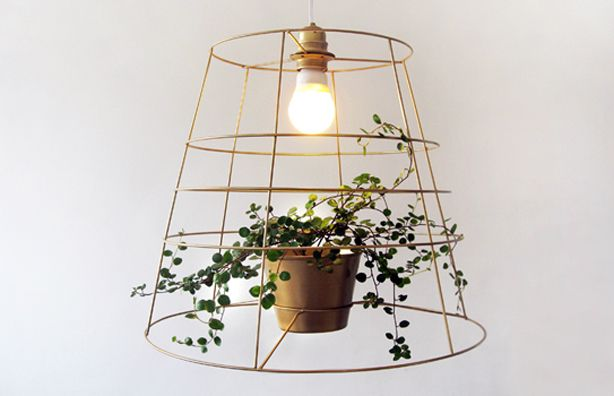 It looks like this poor plant is being interrogated. But a planter in this light fixture is fab.   #planters #lightingdesign #hanginglights #indoorgardening