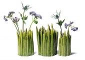 Vase som ser ut som gress :o