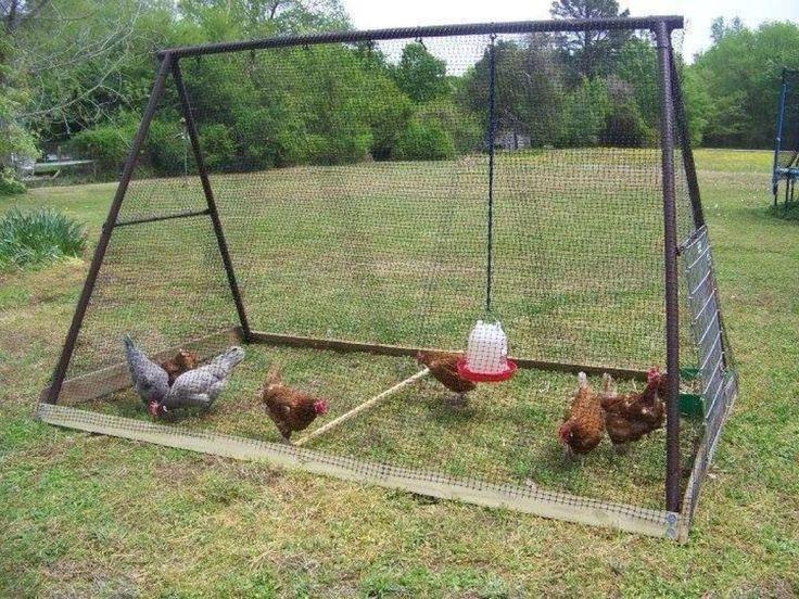Des oeufs frais tous les matins! Quel bonheur ce serait! Vous avez la chance de vivre sur une ferme et avez des poules? Vous pensez changer le poulailler pour en construire un nouveau, ou vous voulez tout simplement en construire un pour enfin avoir