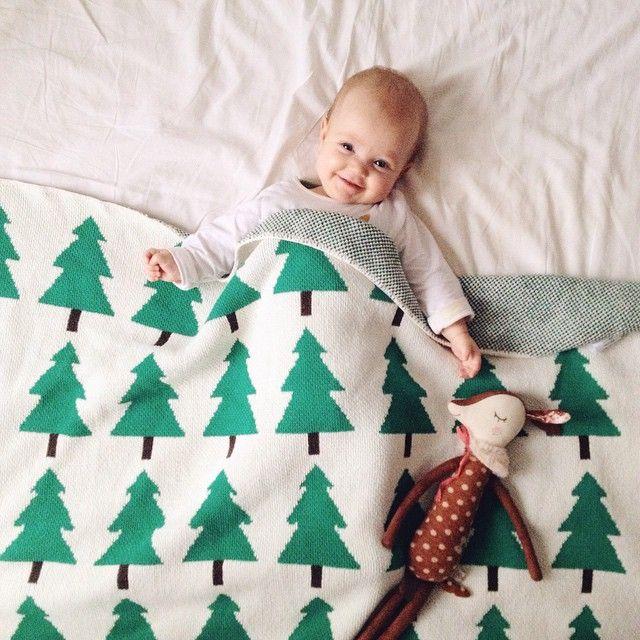 Evergreen blanket