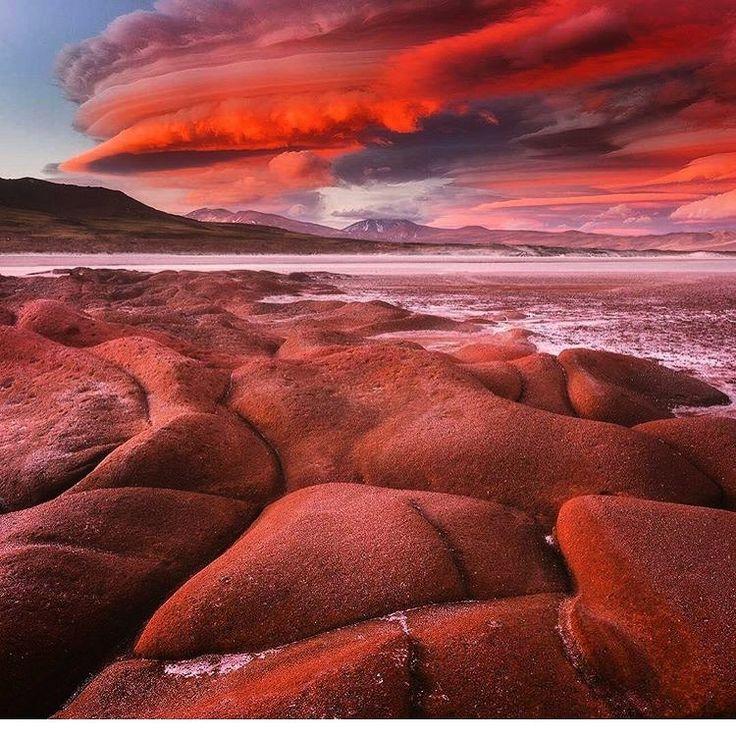 Incredible hues at Piedras Rojas in Chile's Atacama desert. #TLPicks courtesy of @discoversouthamerica   Photo: @danielkordan