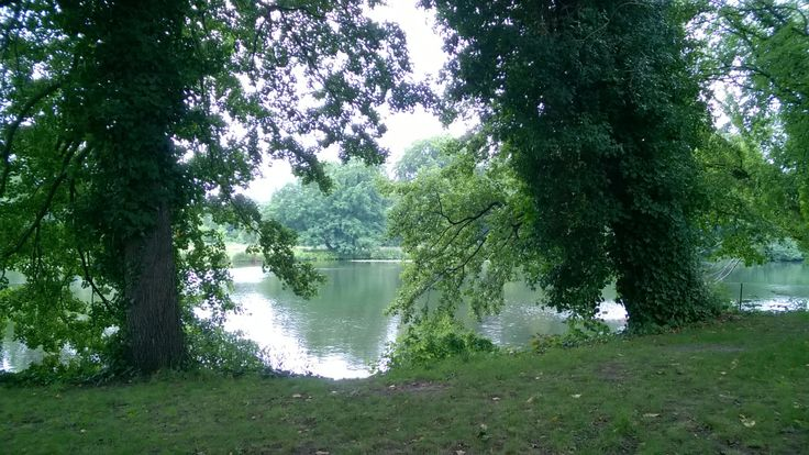 Mystical view of the lake at Schloss Charlottenberg. Its at times like this I really wish I could paint! #Berlin #Garden #lakes