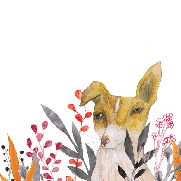 Adolfo Serra: Gray Leaves, White Spaces, Morran Book, Illustrations Inspiration, Frames, Puppys, Bright Flower, Dogs Prints, Book Projects