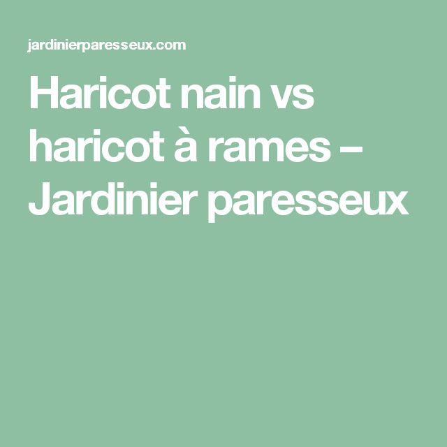 Haricot nain vs haricot à rames – Jardinier paresseux