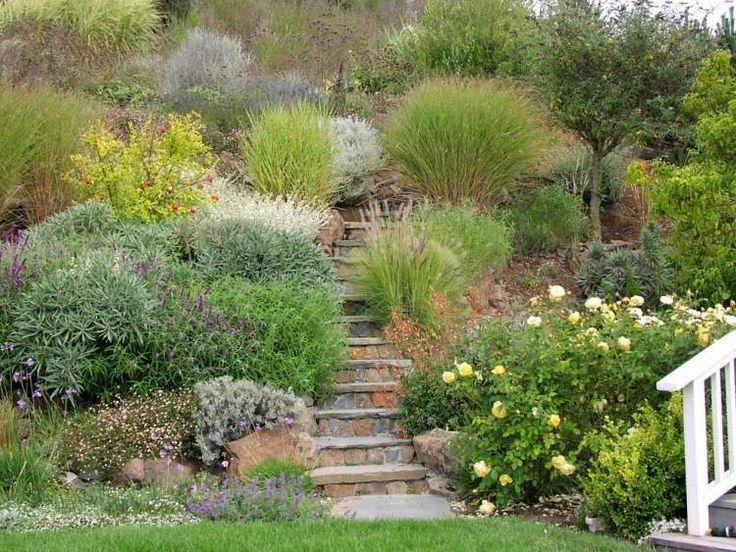 aménagement jardin en pente: planter de la fétuque et de l'herbe de la pampa