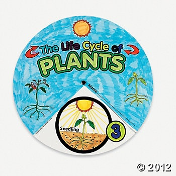 This create-your-own plant life cycle wheel goes through the stages of seedling, growth, watering, etc. This can be a project for students to be used during the plant section of our unit.