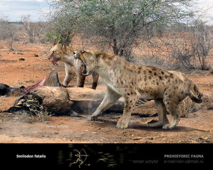 Smilodon Face By Pyroraptor42 On Deviantart: Mejores 393 Imágenes De Megafauna Prehistorica En
