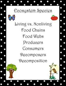 Ecosystem Unit: Living Things, Food Chains Webs, Producers