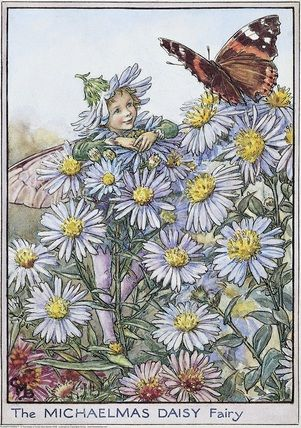 Illustration for the Michaelmas Daisy Fairy from Flower Fairies of the Autumn.  A boy fairy stands amongst Michaelmas daisy flowers talking to a Red Admiral butterfly which is perched nearby.  										   																										Author / Illustrator  								Cicely Mary Barker