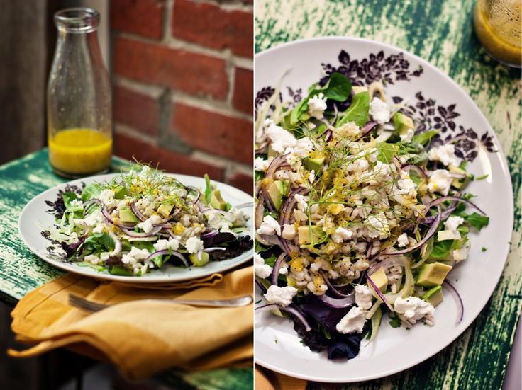 ... Endive, Escarole, Radicchio on Pinterest | Endive salad, Fennel salad