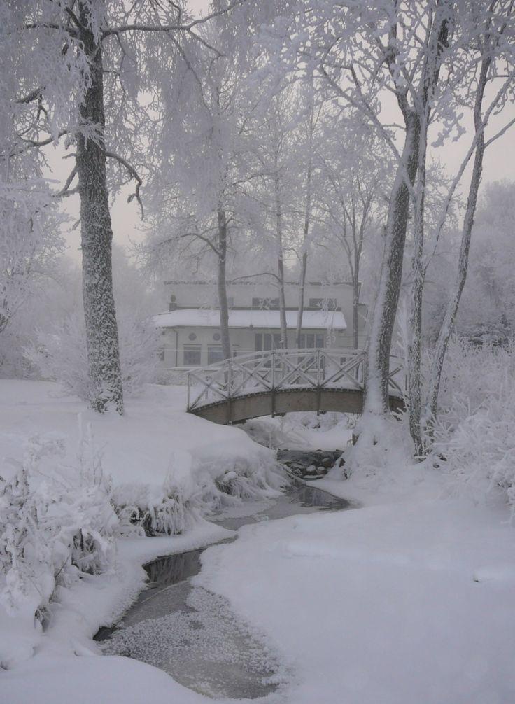 Beautiful Winter Outfit Www Pinterest Com: 2506 Best Winter Images On Pinterest