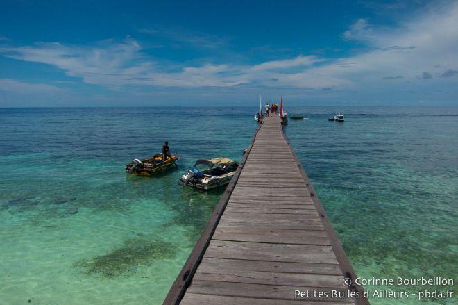 Le ponton de #Kakaban.  Archipel de #Derawan #Borneo #Indonesie