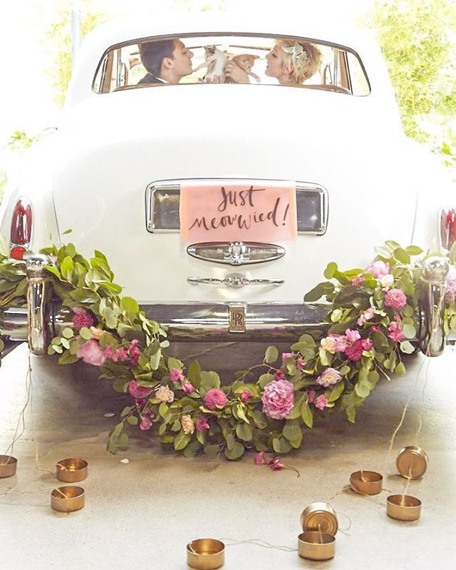 Ride off into the sunset ☀️ in style with this super cute #wedding getaway #car setup! And yes, those are indeed #kittens  they are holding in the back seat! #weddinginspiration photo credit @himmwp #cat #vintage #flowers Xoxo @weddingchicks