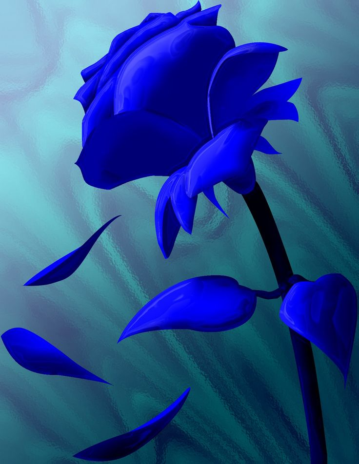 Best 10 rose flower pictures ideas on pinterest flower for How are blue roses made