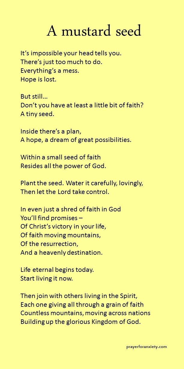 faith of a mustard seed coloring page - 97 best mustard seeds images on pinterest bible