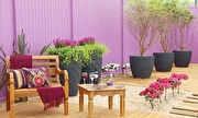 Jornal Hoje - Veja dicas para decorar a casa e receber os amigos   globo.tv