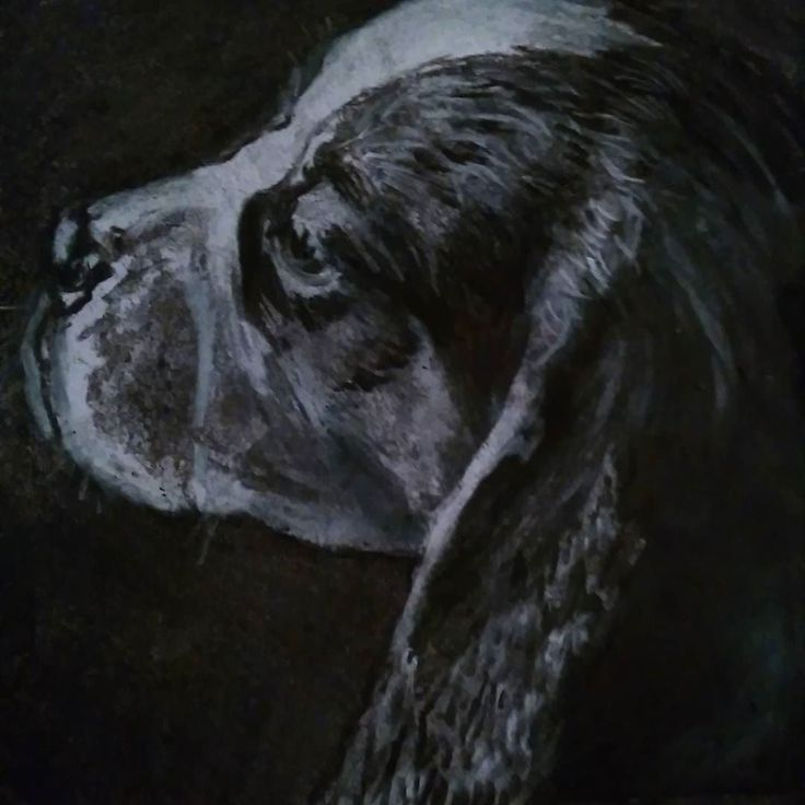 Cool dog art and wall art #dogs #art #painting #love #instagood Charcoal beagle pup drawing.. Oscarjetson@gmail.com for a price list.#beagle #dogs #dogmom #art #drawing #beaglesofig #beaglepuppy #beaglesofinstagram #beaglelove #beagleboy #oscarjetson #follow #instagood #puppy #love