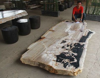 solid petrified wood dining room table - Stone Slab Dining Room Decorating
