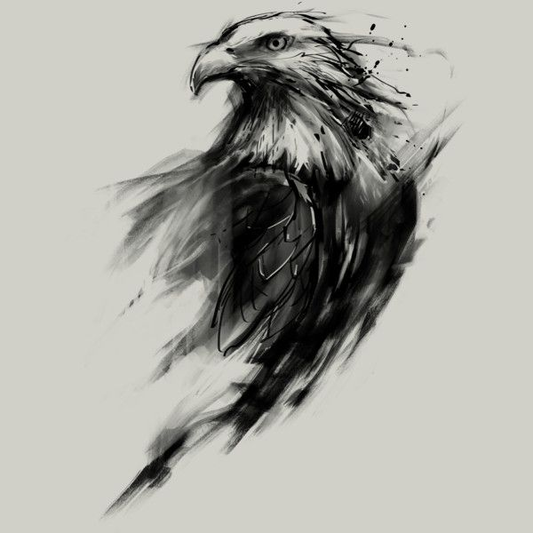 Best 20  Eagle Tattoos Ideas On Pinterest Drawing