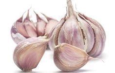 Orto sul balcone: come coltivare l'aglio in vaso | Giardinieri in affitto