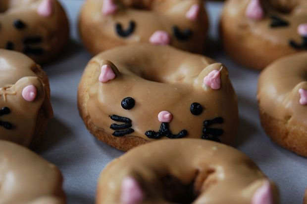 cat donuts-- you've got to be kitten me!