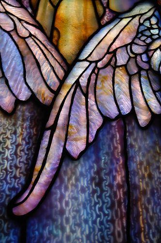 Tiffany Glass Wings