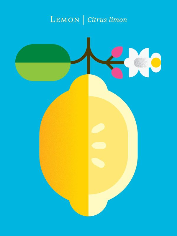 Graphic Fruit Posters by Christopher Dina in Minimal