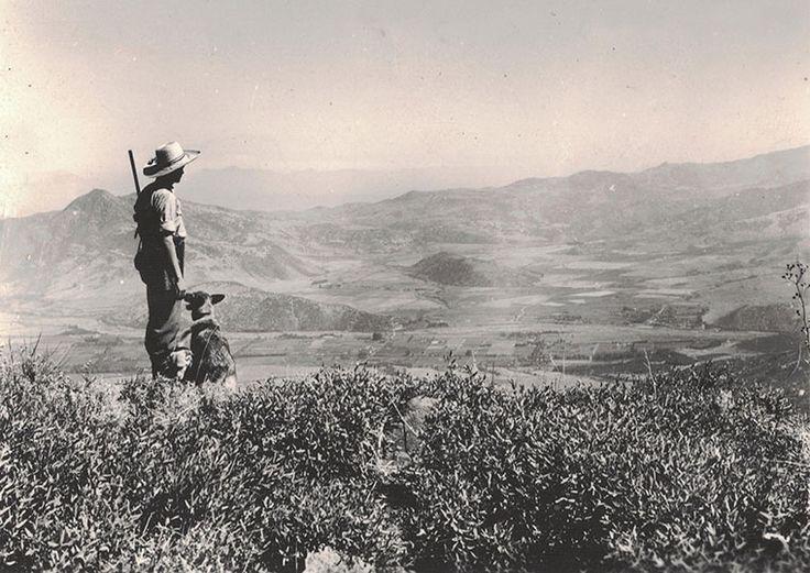 Vista hacia Las Condes y Lo Barnechea en 1949.