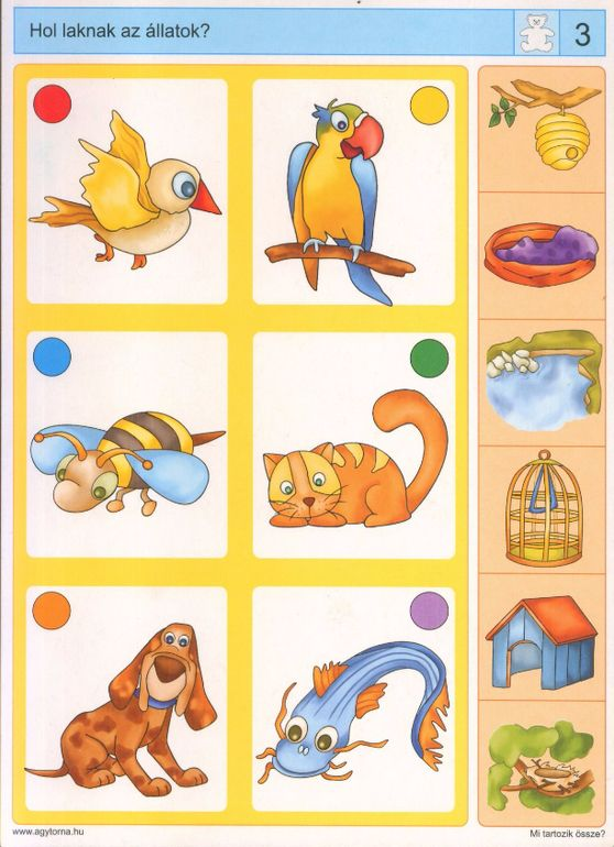 Piccolo: beer kaart 3