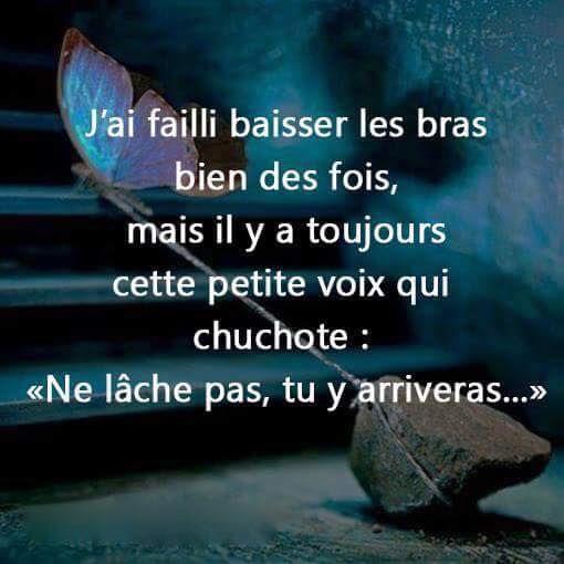Comment ne jamais abandonner | abd 2 | Quotes, French quotes et