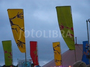 Flags at Lamer Tree Festival