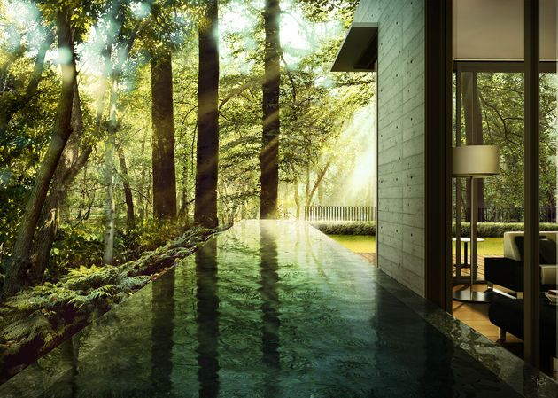 CGarchitect - Professional 3D Architectural Visualization User Community | Inspiration - Trees & Foliage Vol. 2