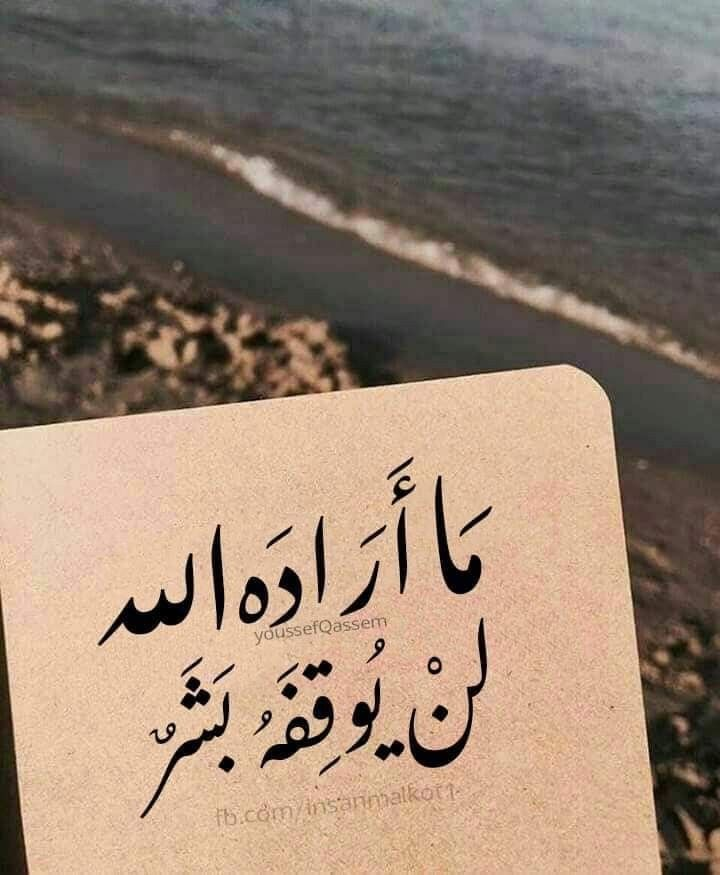 Pin By فاطمة حافظ On و ذ ك ر Books For Teens Islamic Quotes Words