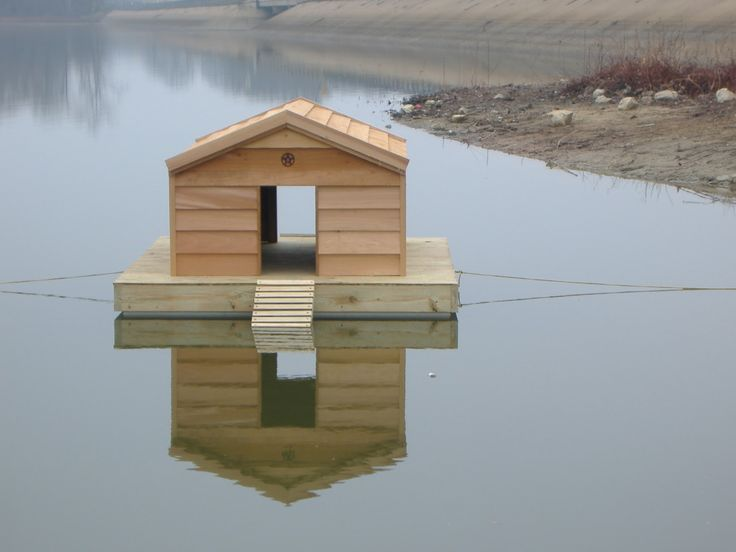 1000 ideas about duck house on pinterest duck coop for How to build a duck shelter