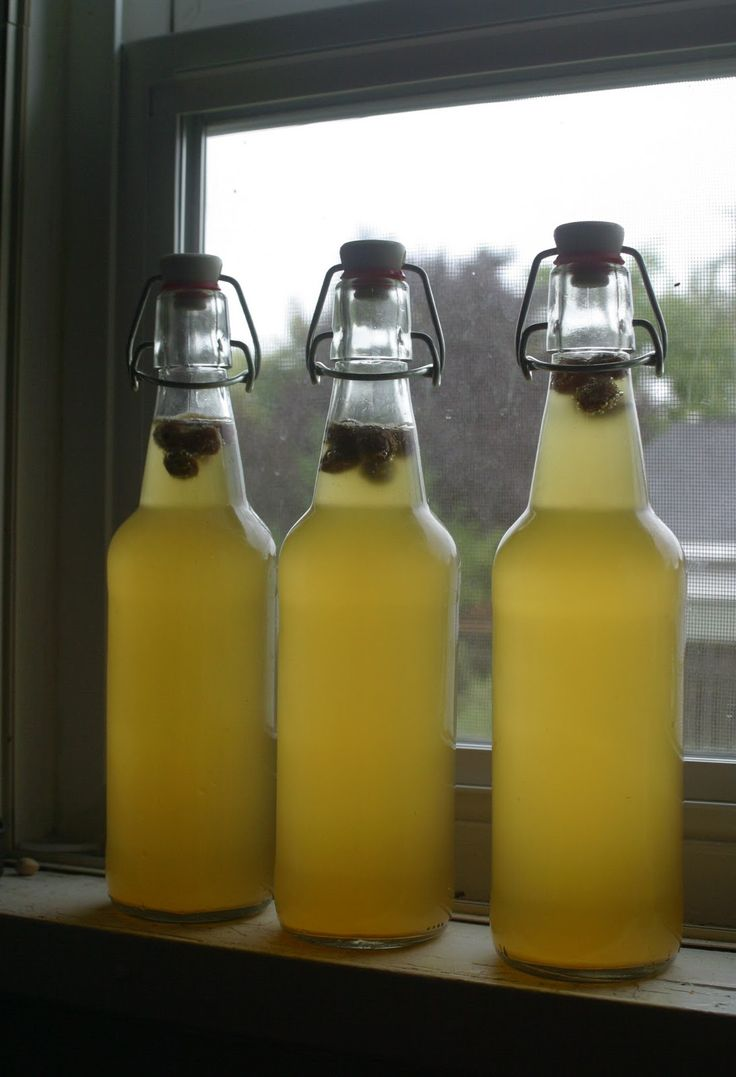 Sima (Finnish May Day drink -- fermented lemonade)  When it's ready, the raisins float to the top!