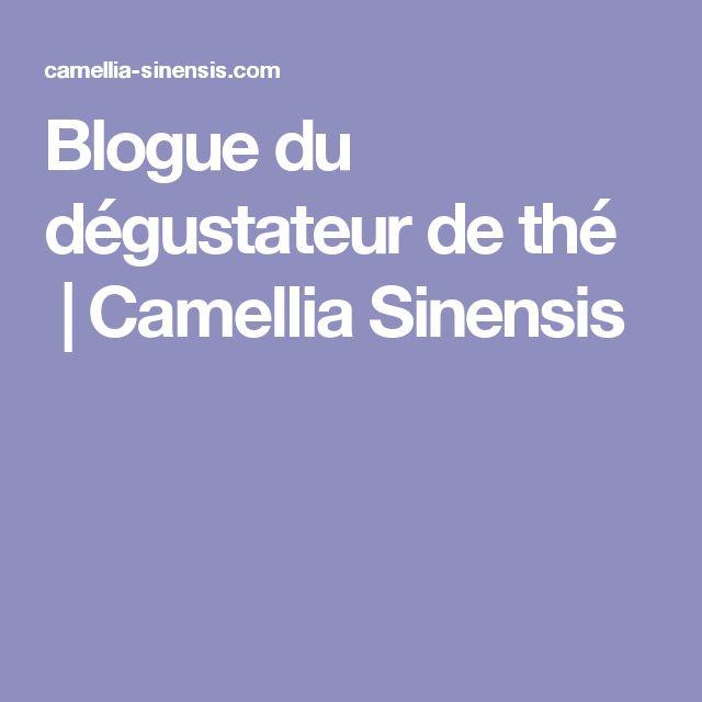 Blogue du dégustateur de thé |Camellia Sinensis