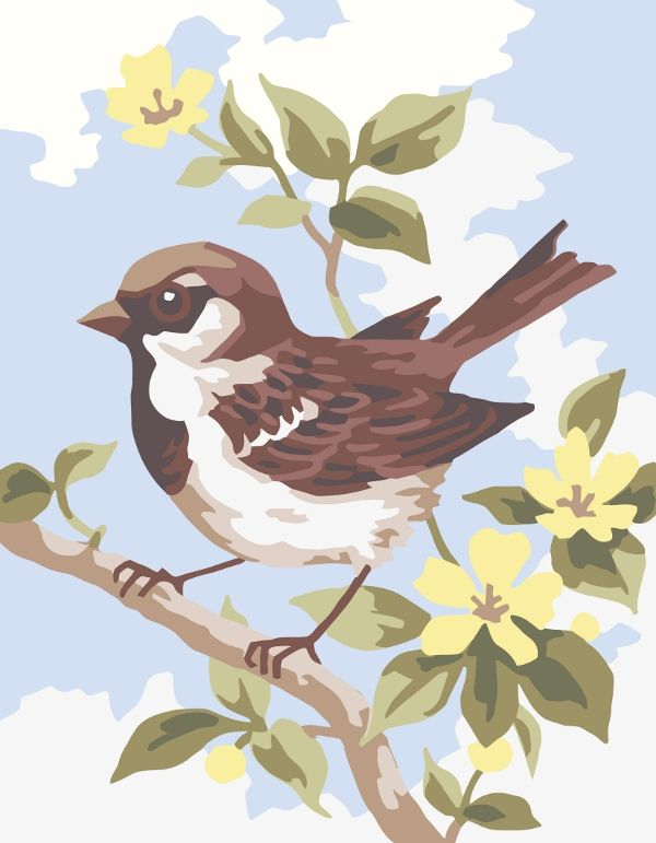 Collection d'Art:3.315 Brown Wren - CANVAS ONLY - Penelope White Canvas, colour printed design. Canvas size 20cm X 25cm with DMC thread recommendations.