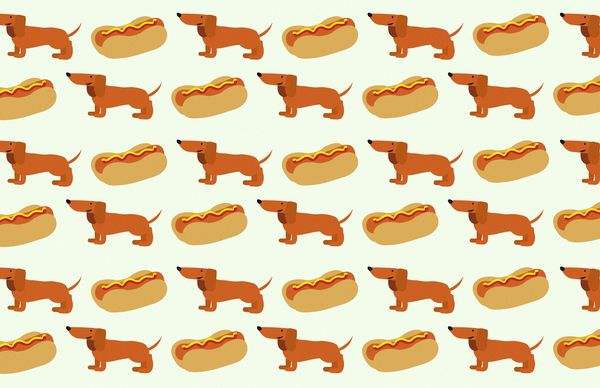 weiner dog Fabric that I have to have! :)