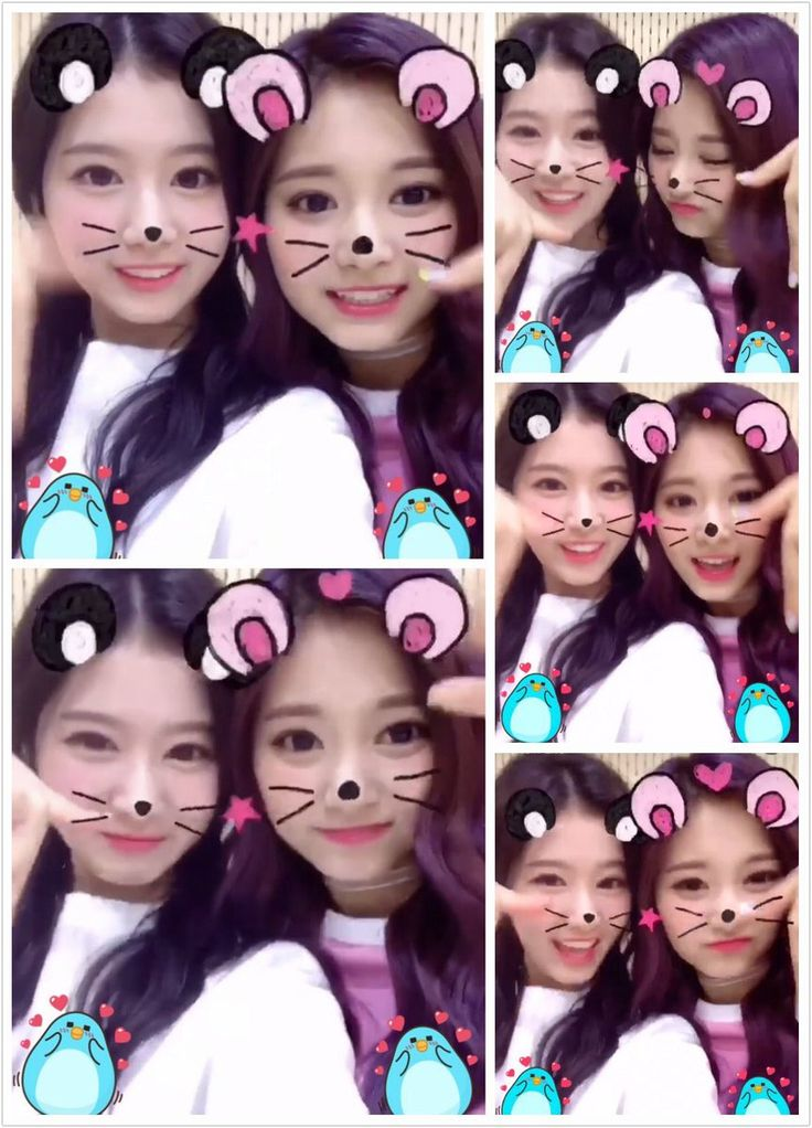 Sana&Tzuyu  Twitter