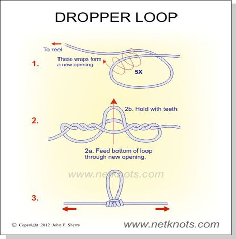 Dropper Loop Knot / very good graphic video showing how to do this knot