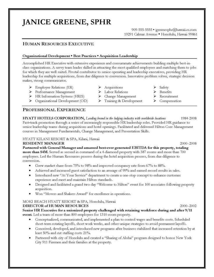 Best Ceo Resume Examples Sample Cover Letter Cto Winning