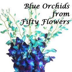 Blue Orchid Wedding Bouquets   Blue Flowers for Weddings, blue orchid centerpieces