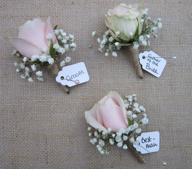 Sweet Avalanche Pale Pink roses with baby's breath and brown string buttonholes