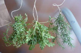 Deshidrata hierbas aromáticas (i22)
