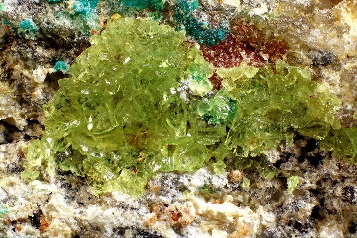 Agricolaite, K4(UO2)(CO3)3, Giftkies adit, Jáchymov, Jáchymov District, Krušné Hory Mts, Karlovy Vary Region, Bohemia, Czech Republic. Fov 3 mm. Largest crystal size: 0.3 mm. Typical agricolaite from the type-locality. Copyright © Pavel Škácha