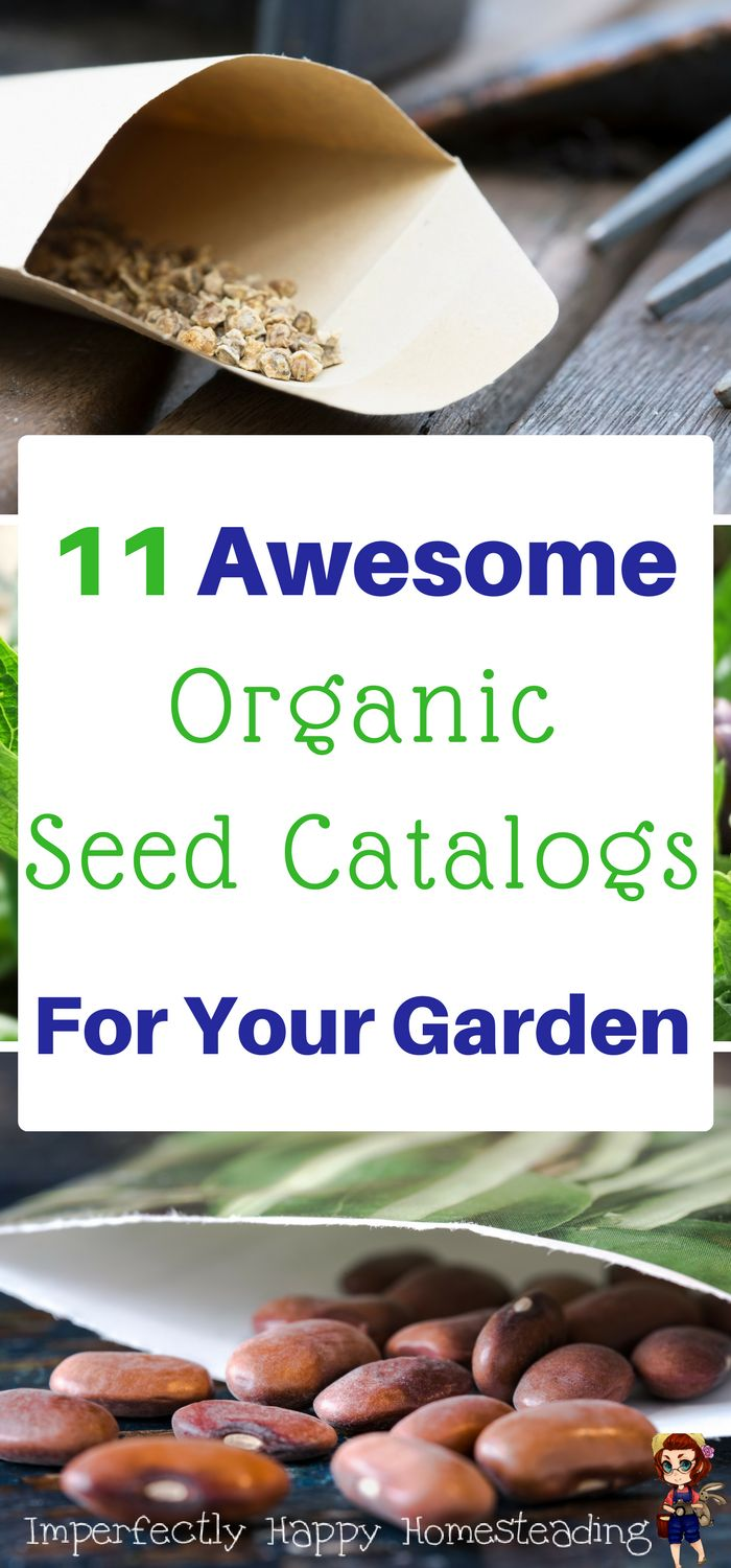 11 Awesome Organic Seed Catalogs for Your Vegetable Garden and Homestead. Great for heirloom, non-gmo and organic seeds!